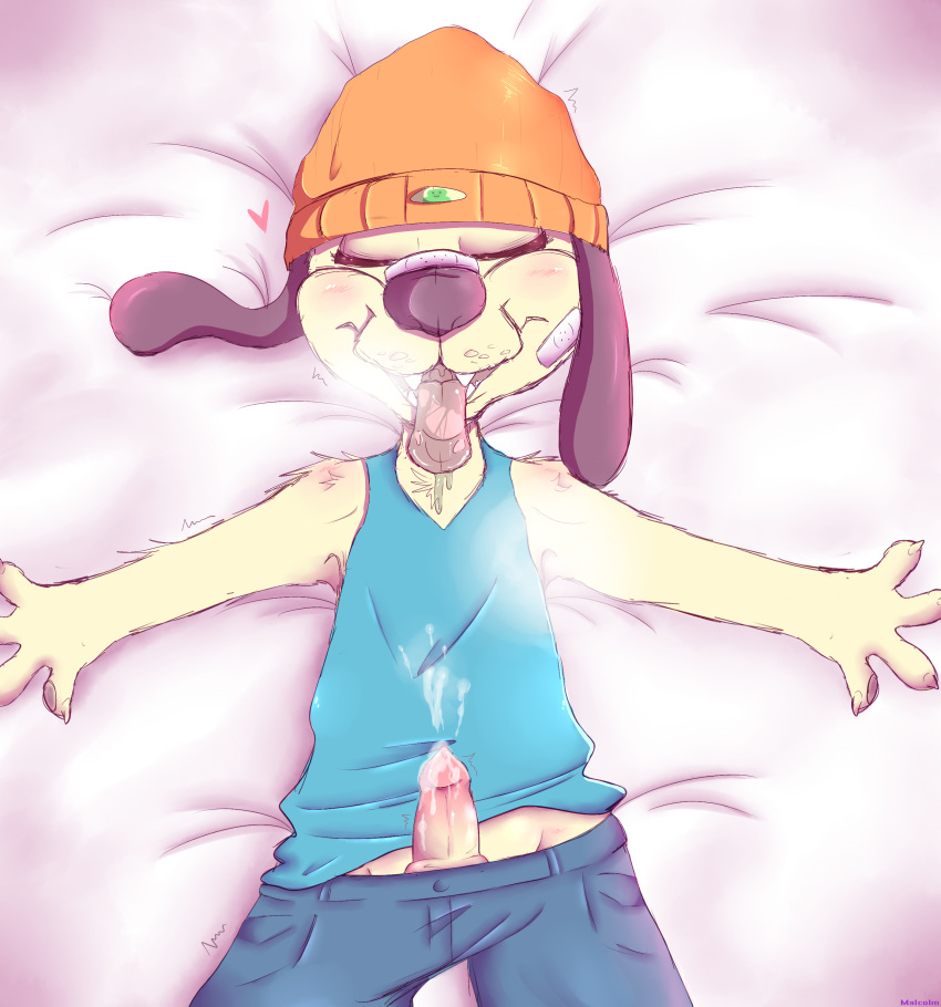 rapper parappa the Forest of the blue skin forum